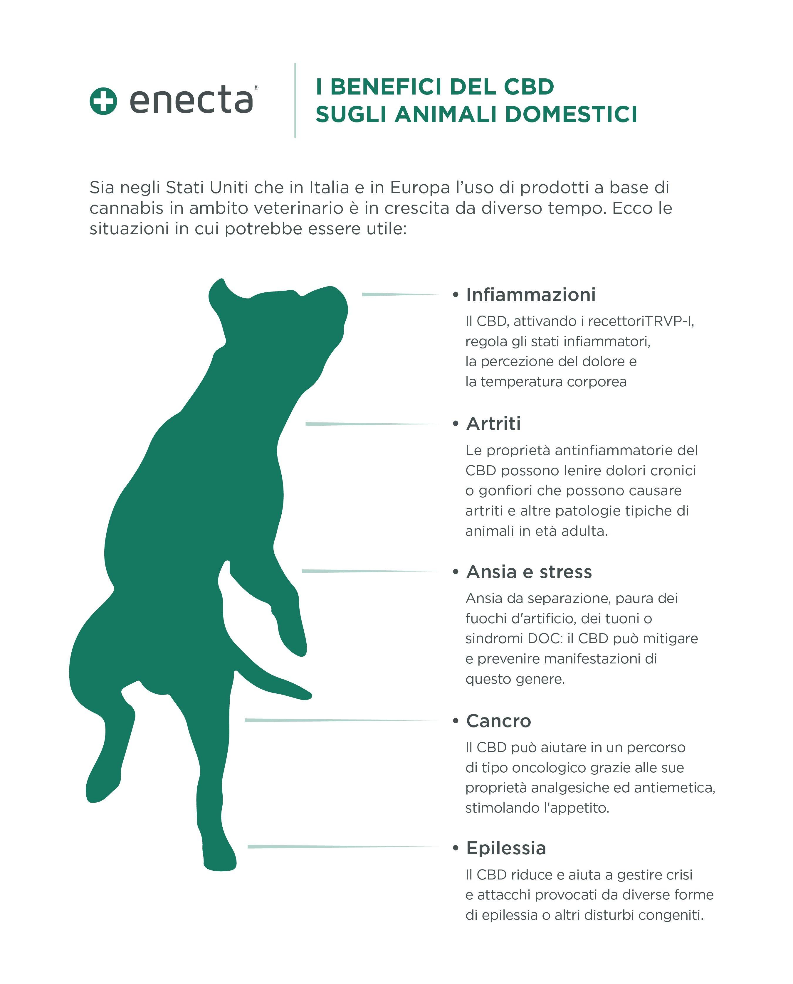 benefici del cbd sugli animali domestici