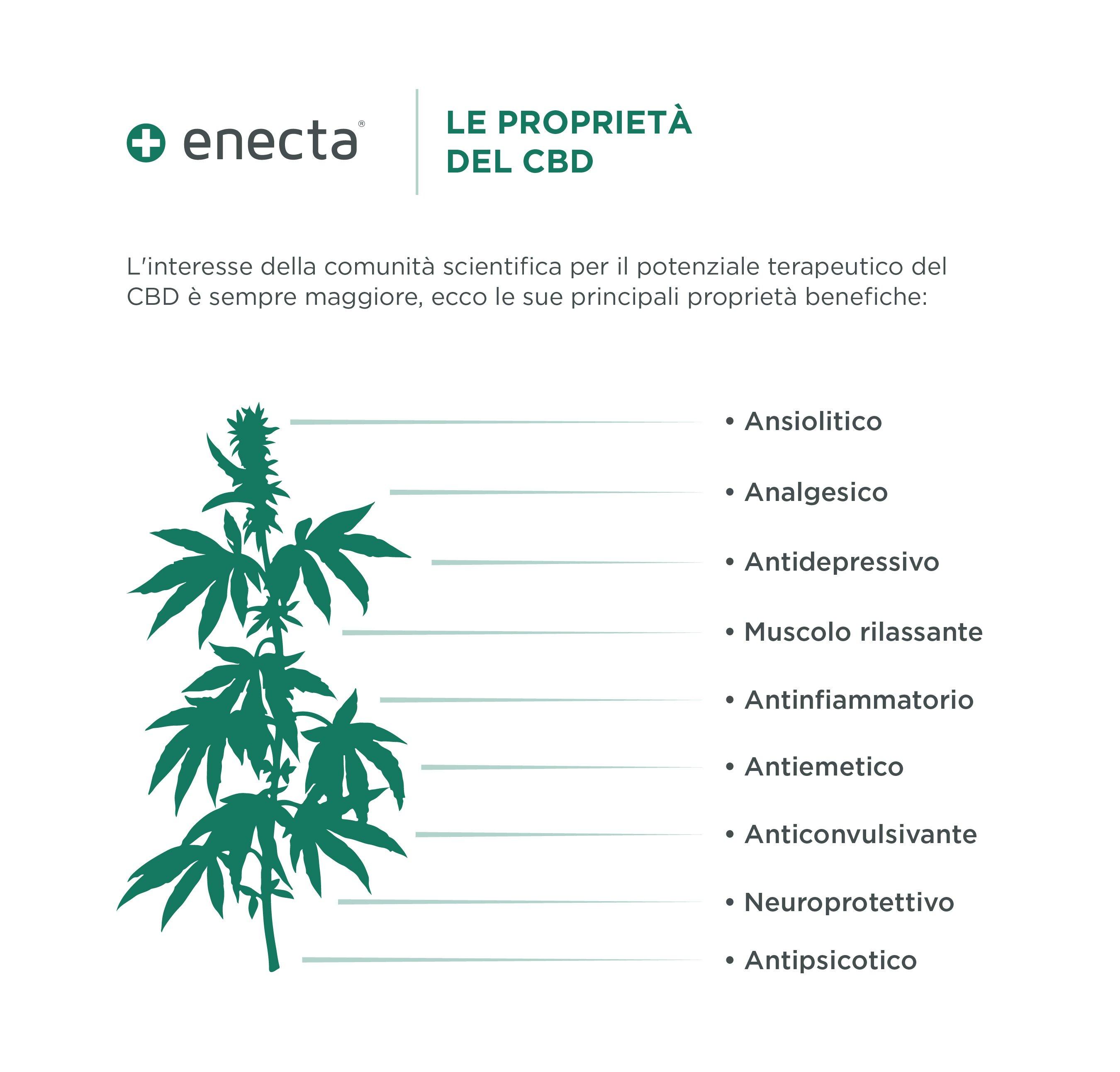 Infografica_cbd-IT