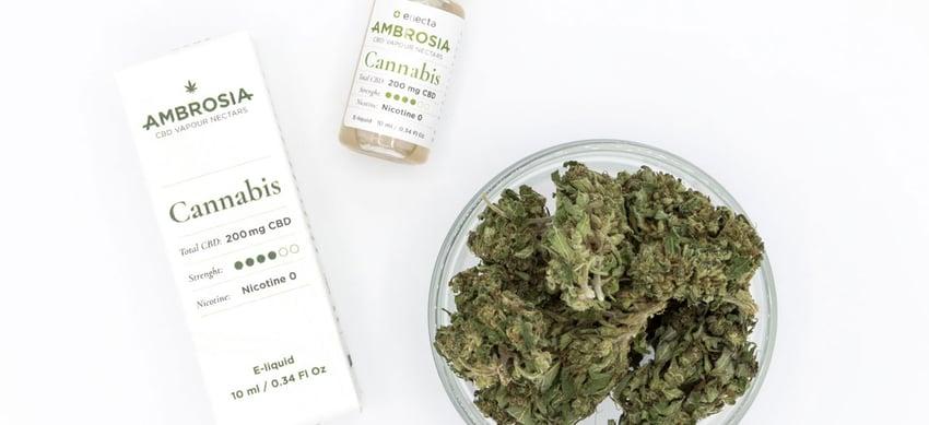 ambrosia-cannabis-200_WEB_LQ-1