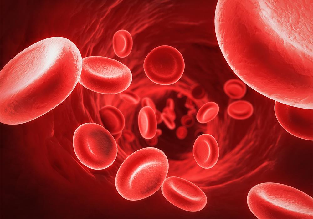 cannabidiolo-e-pressione-sanguigna