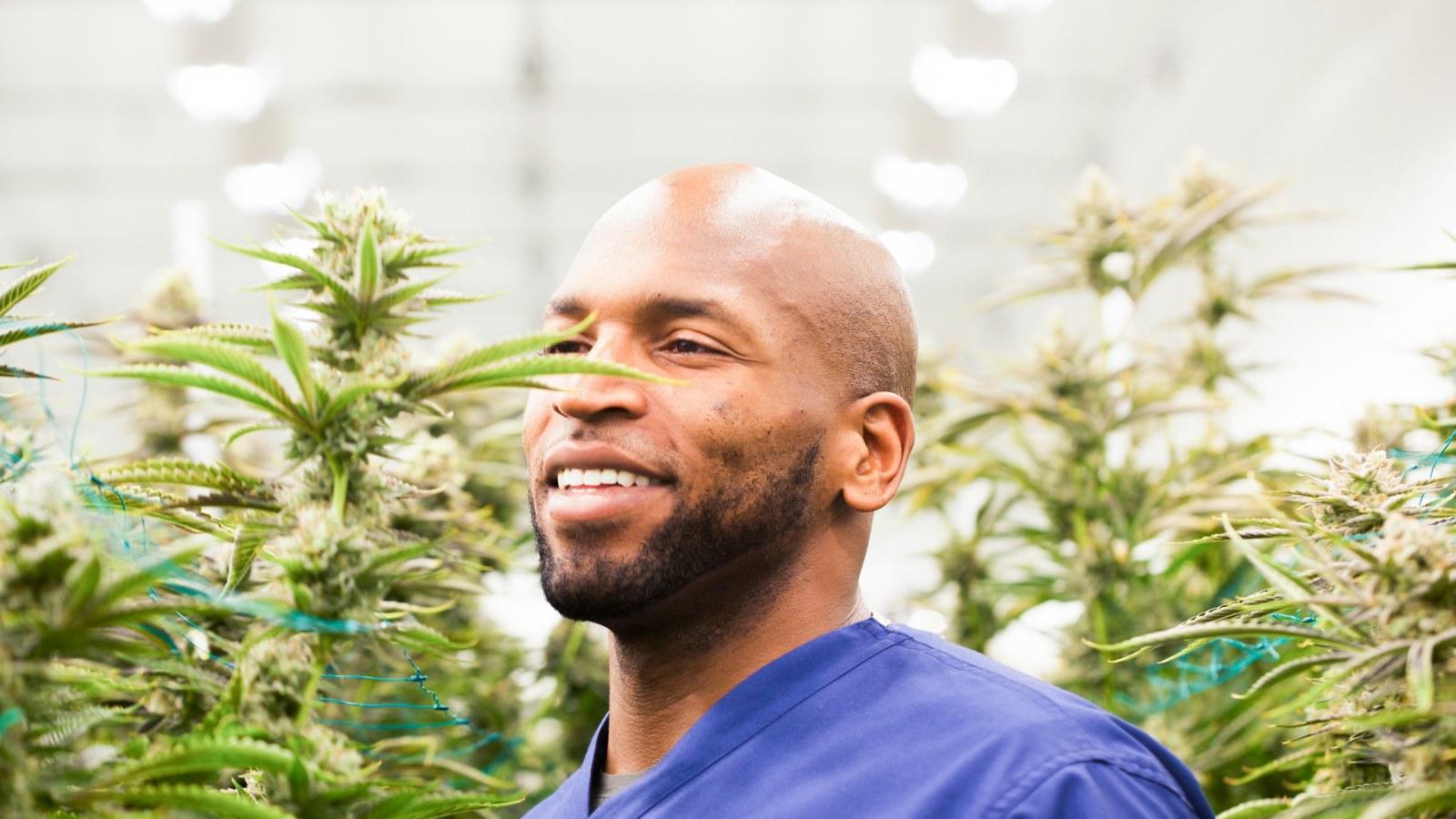 eugene monroe cannabis terapeutica nfl